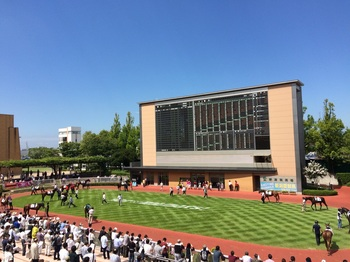 新潟競馬場☆.jpg